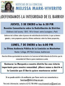 Districting Flyer - Spanish